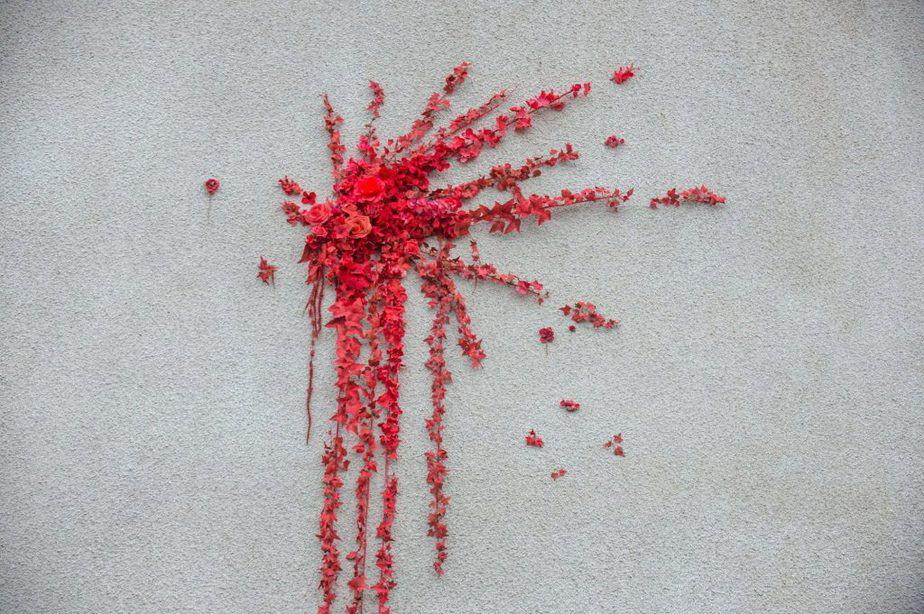 バンクシーがブリストルの壁に描いたバレンタインデーの赤い薔薇